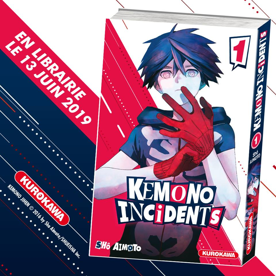 Kemono Incidents Cover