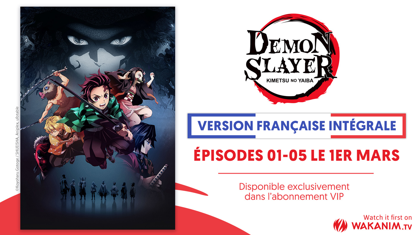 Demon Slayer VF Annonce